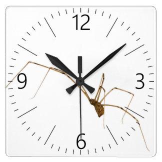 Spider Square Wall Clock
