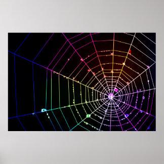 Spider Web 1 Print