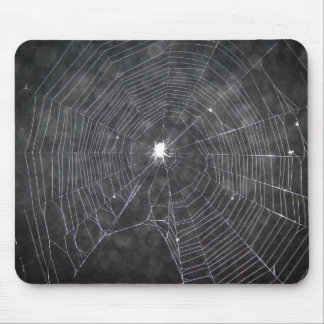 Spider Web At Night Mouse Pad