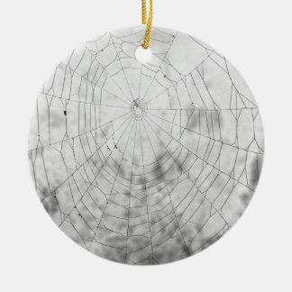 Spider web ceramic ornament