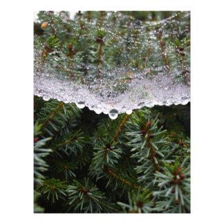 Spider web letterhead