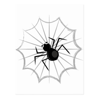 Spider Web Postcard