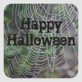 Spider Web Square Sticker