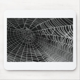 Spider web with water beads mouse pad