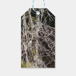 Spider webs with dew drops gift tags