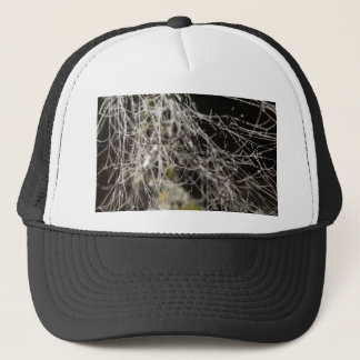 Spider webs with dew drops trucker hat