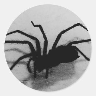 spideroo classic round sticker