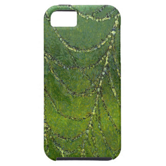Spiders Web iPhone 5 Cases