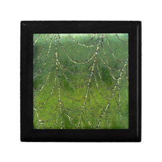 Spiders Web Keepsake Boxes