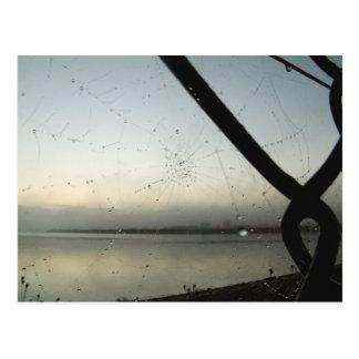 Spider's Web   Postcard
