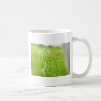 Spiderweb with drops coffee mug