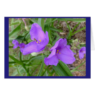 Spiderwort Flowers Blank Note Card