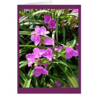 Spiderwort Flowers II Blank Note Card