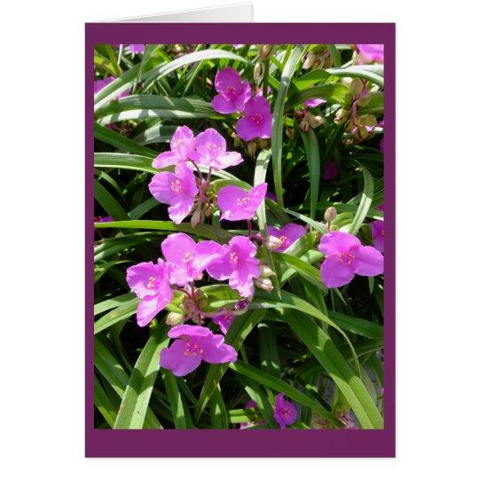 Spiderwort Flowers II Blank Note Card