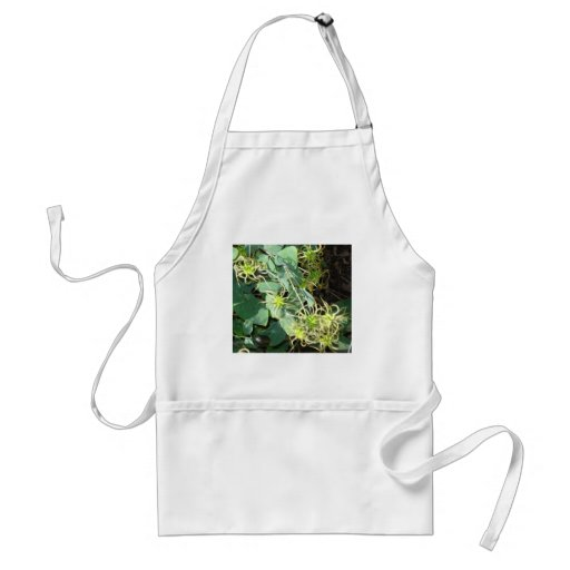 spidery greens aprons