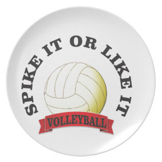 spike it or like it volly ball plate