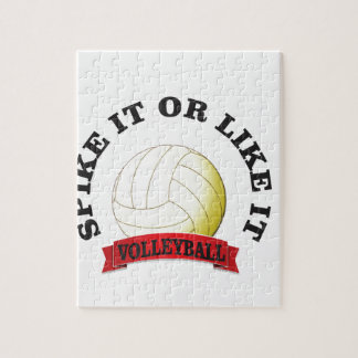 spike it or like it volly ball puzzle