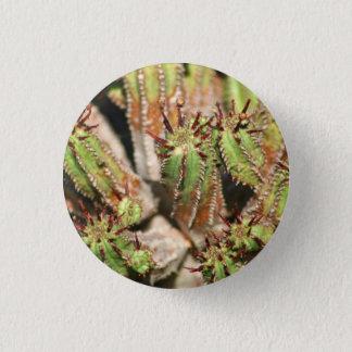 Spikey Closeup pin