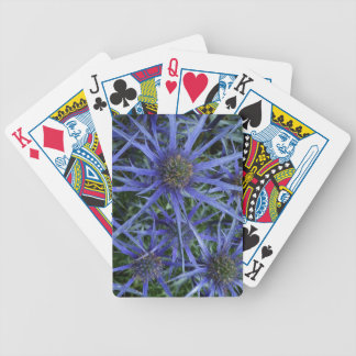 SPIKY BLUE SEA HOLLY FLOWER Pack Of Cards