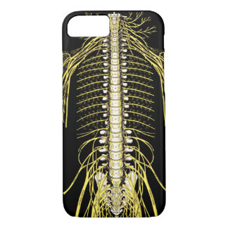 Spinal Nerves Anatomy Image Chiropractic Case-Mate iPhone Case