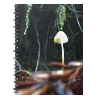 Spindly Mushroom Notebooks