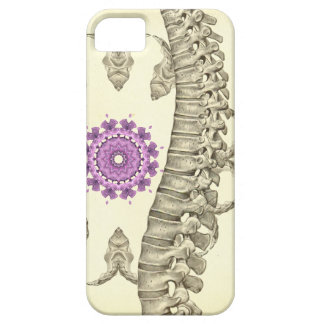 Spine Anatomy Chiropractic Phone Cover