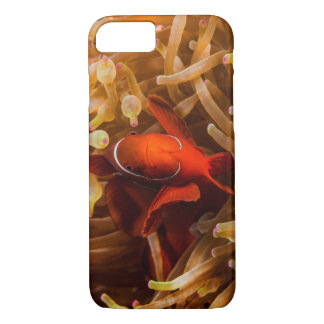 Spinecheek Anemonefish on the Great Barrier Reef iPhone 7 Case