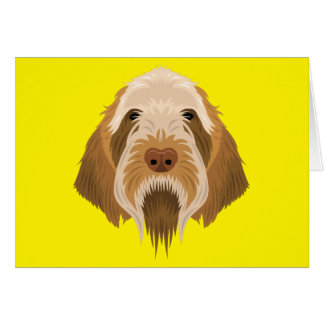Spinone Italiano Card