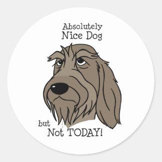 Spinone Nice dog Classic Round Sticker