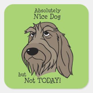 Spinone Nice dog Square Sticker