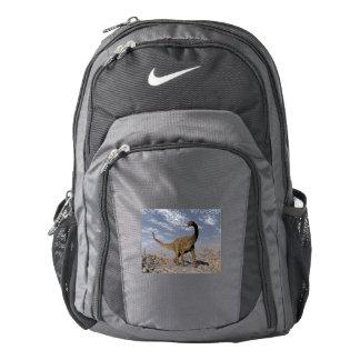 Spinophorosaurus dinosaur walking in the desert backpack