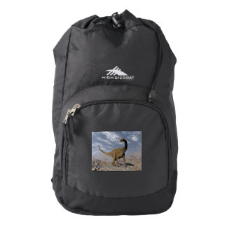 Spinophorosaurus dinosaur walking in the desert backpack