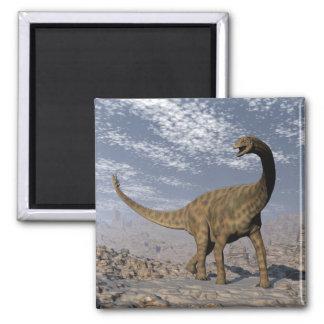 Spinophorosaurus dinosaur walking in the desert magnet