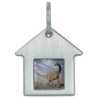 Spinophorosaurus dinosaur walking in the desert pet name tag
