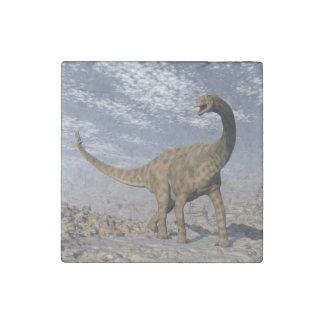 Spinophorosaurus dinosaur walking in the desert stone magnets