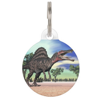 Spinosaurus dinosaur in the desert - 3D render Pet Name Tag
