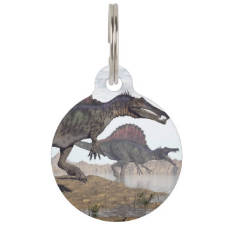 Spinosaurus dinosaurs in desert - 3D render Pet Name Tag