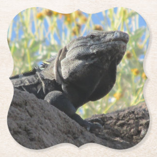 Spiny-tailed Iguana Paper Coaster