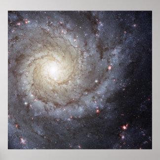 Spiral Galaxy M74 Poster