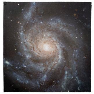 Spiral Galaxy Napkin