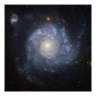 Spiral Galaxy (NGC 1309) Perfect Poster