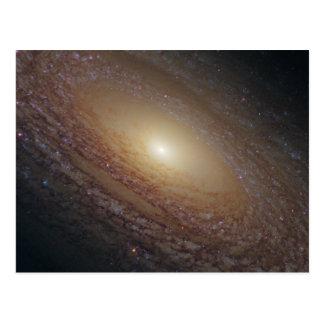 Spiral Galaxy NGC 2841 Postcard