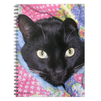 Spiral Notebook: Funny Cat wrapped in Blankets Notebook