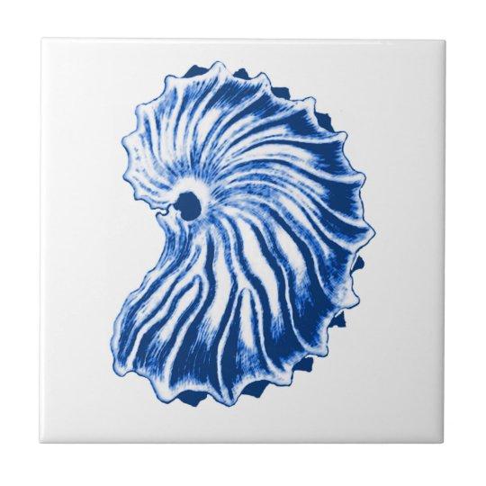 Spiral Shell, Indigo Blue and White Tile