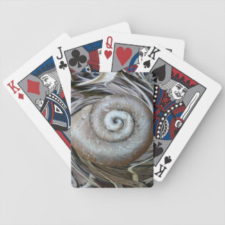 Spiral Shell Playing Cards