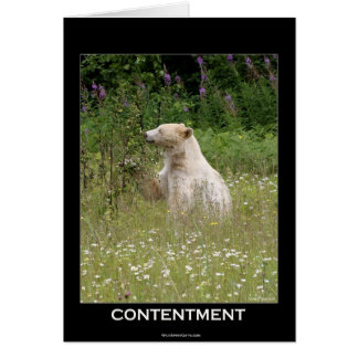"""Spirit Bear"" gifts Card"