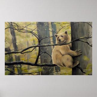 Spirit Bear Prints Kermode Bear Painting Prints Poster