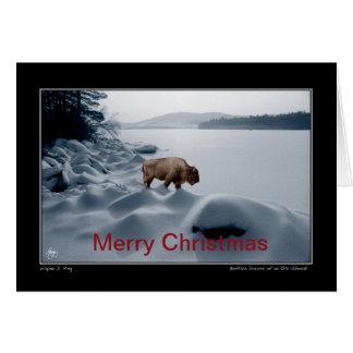 Spirit Buffalo Before the Lake - Christmas Card