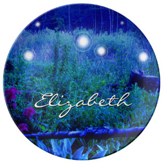 Spirit Lights Orbs Marshy Meadow Night Name Blue Porcelain Plates