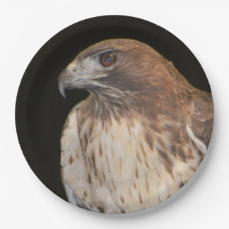Spirit Of The Hawk 9 Inch Paper Plate